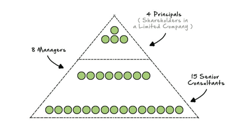 Figure 5 - Illustrative schematic of Moorhouse Consulting at year five – client serving staff